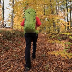 Trekking - woman on mountain hike